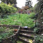 Vikings-Garden-Before
