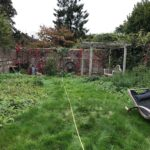 Vikings-Garden-Before-3