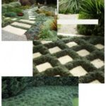 gallery 4 2 Planting mood board Apl 3 300x300 1